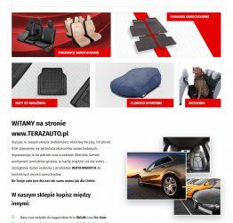 Widok kategorii na stronie głównej sklepu internetowego terazauto.pl